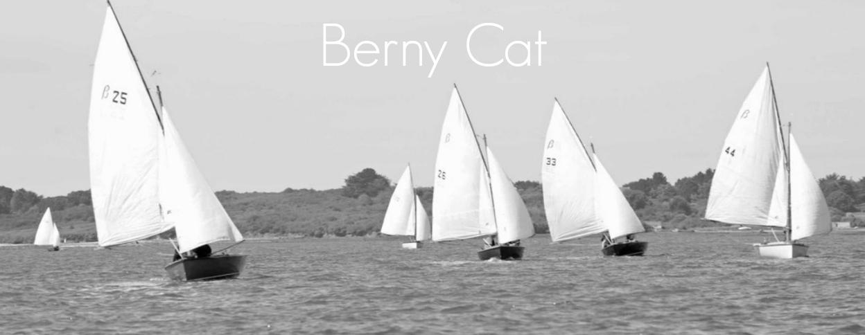 Berny Cat B&W243234